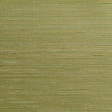 Olive Green/Green/Celery Solid Wallcovering by Kravet Wallpaper