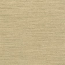 Wheat/Gold Solid Wallcovering by Kravet Wallpaper