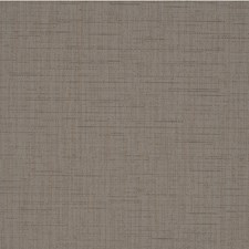 Sable Solid Wallcovering by Winfield Thybony