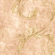 Salmon Wallcovering by Scalamandre Wallpaper