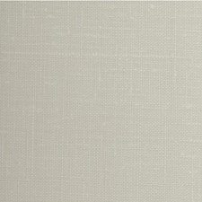 Vanilla Solid Wallcovering by Winfield Thybony