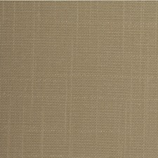 Amaretto Solid Wallcovering by Winfield Thybony