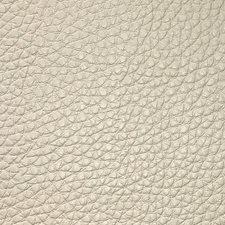 Chardonnay Wallcovering by Scalamandre Wallpaper