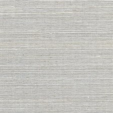 Oyster Solid Wallcovering by Winfield Thybony