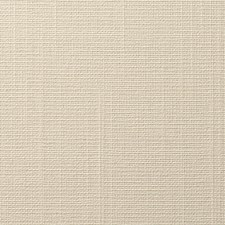 White Wallcovering by Scalamandre Wallpaper
