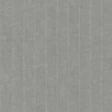 Y6201004 Elemental Stripe by York